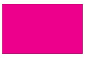 Pink Sari Project