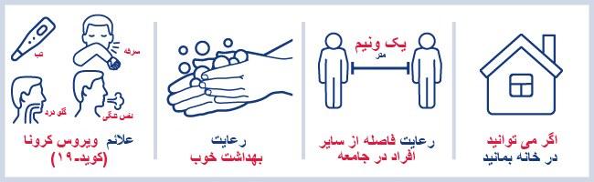 Persian (2).jpg